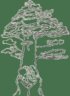 Temps Séquoias quatrième mois