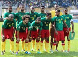 Les Lions indomptables du Cameroun. Des atouts pour aller loin.