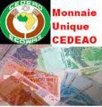 La création d'une monnaie unique de la Cedeao reportée à 10 ans