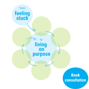 Living on purpose at 50plus - book consultation