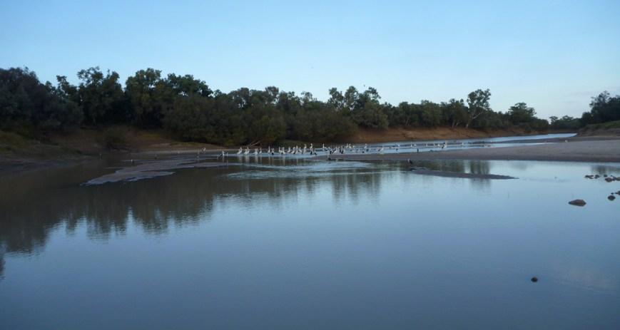 Cooper-Creek