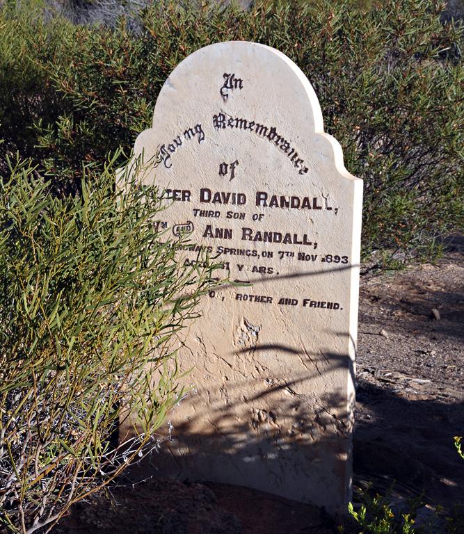 David-Randall