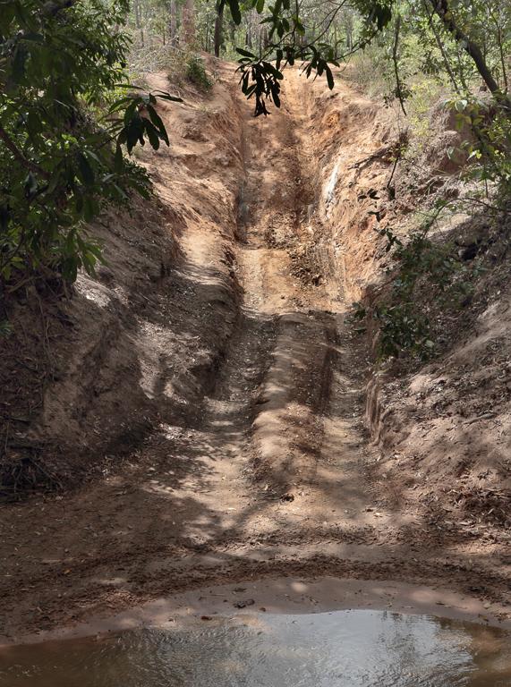 Palm-Creek-Exit