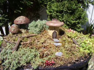fairygarden2