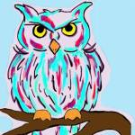 Owl was drawn digitally by Letitia Pfinder