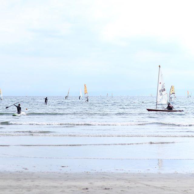 昨日の和賀江島。お魚いっぱいで息子たち大喜び。海気持ちよかったー。 (Instagram)