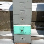 This hive is not as populous as 1208