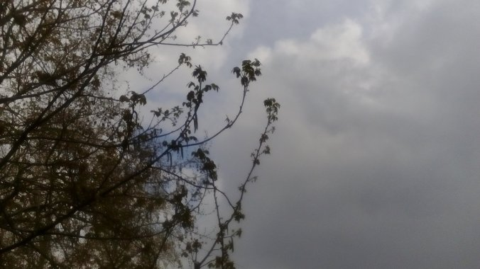 Rat sa oblacima