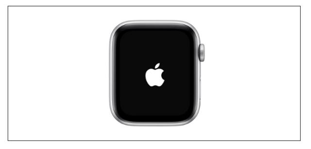 Quando vir o logotipo da Apple na tela, solte os dois botões.