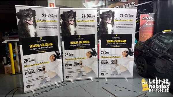 Roll up 85 x 205 cm. Evento Smart Fit