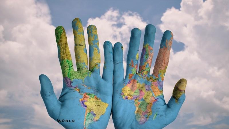 Echar raíces: desarraigo y pérdida de identidad | Letra Urbana