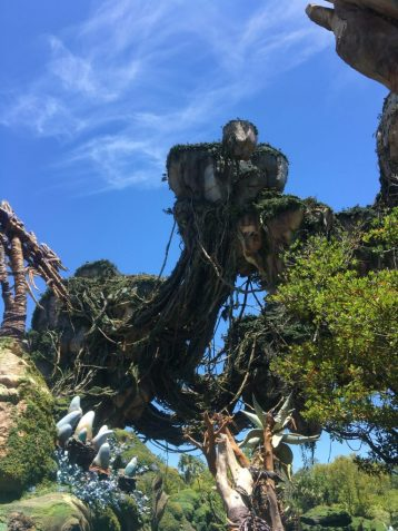 Disney's Pandora: World of Avatar Disney's Animal Kingdom