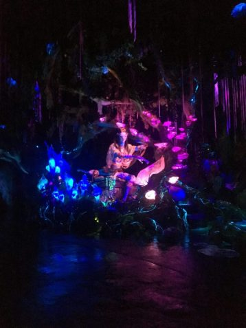 Na'vi River Journey World of Avatar Disney World