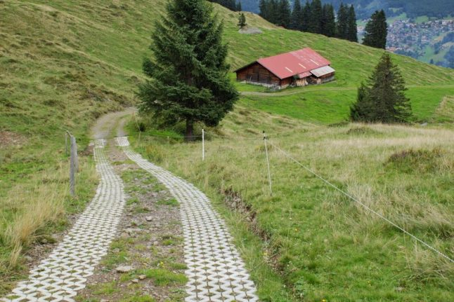 Trail from Murren to Winteregg Switzerland