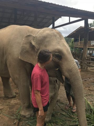Meeting Lucky the elephant