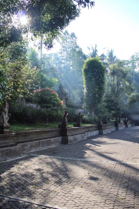 Sunbeams coming through trees at Tirta Empul Ubud Bali