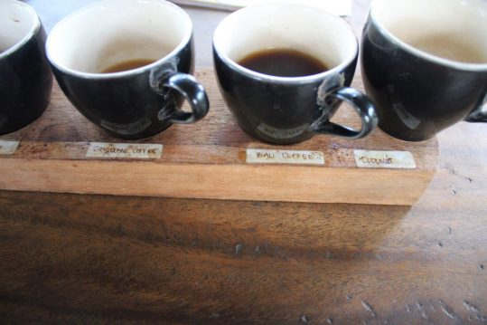 Teas and coffees at Kampung Kopi Coffee Plantation Ubud Bali