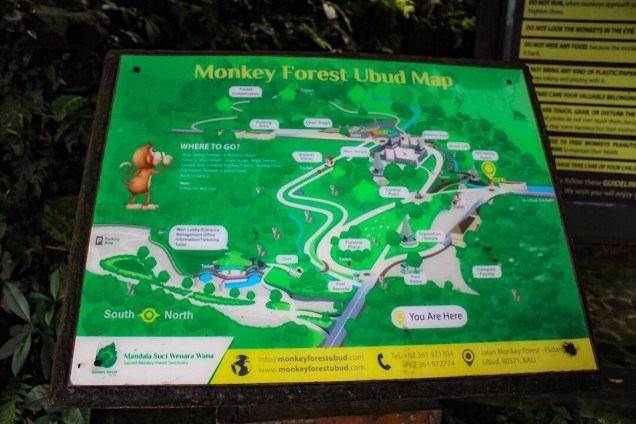 Map of the Monkey Forest