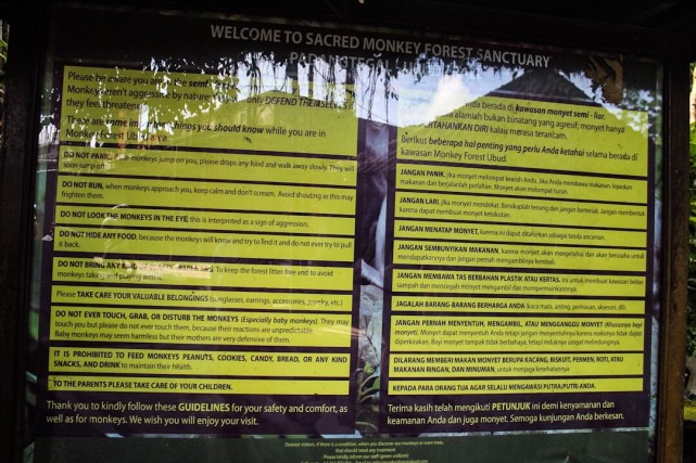 Rules for walking through the monkey forest in Ubud, Bali