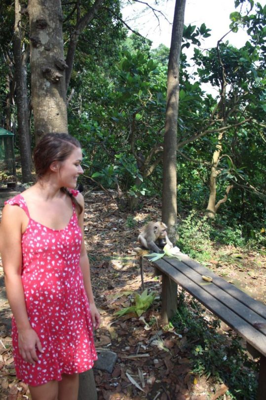 Standing near monkeys in Monkey Forest ubud, Bali