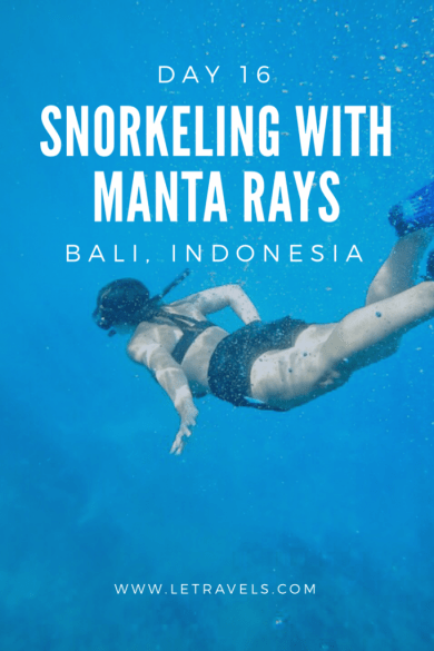 Have you ever wanted to swim with manta rays in the wild? In Bali, you can! Check out this post to learn all about how to do this and what your day will be like | #bali #indonesia #travel #snorkeling #mantaray #travelbali #balitravel