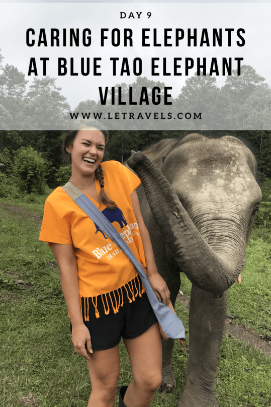 Visiting an elephant sanctuary in Thailand | A full review of our day at the elephant sanctuary | #elephants #thailand #chiangmai