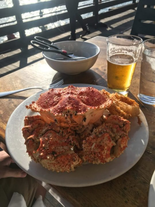 A giant crab for dinner in Santa Barbara California