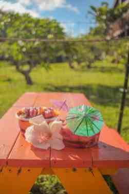 smoothie bowl sunrise shack oahu hawaii