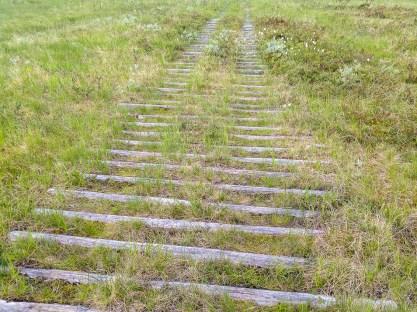 Fyrhjulingsväg på väg ner till Munsvattnet