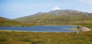 En liten sjö i närheten av Klimpfjäll