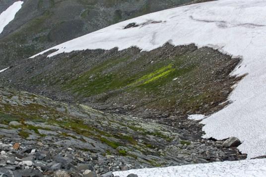 Snön hänger ner mot bäckravinen