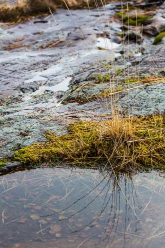 Vatten bland klipporna