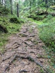 Besvärlig stig