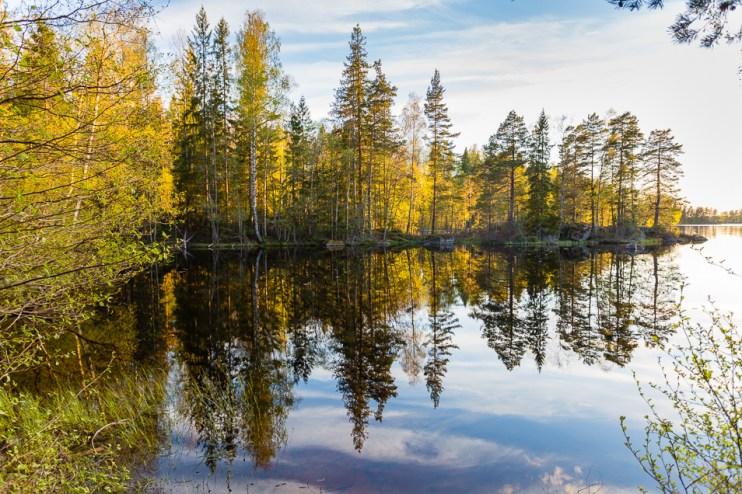 Spegelblankt på Bosjön