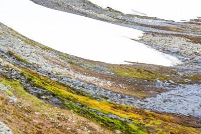 snöfält och vackra färger