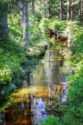 Kvarnbäcken-Lerkesåns naturreservat