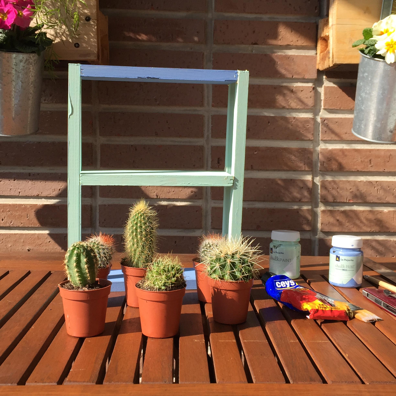 Mini estanter a de madera para cactus let s do it yourself for Minibar de madera