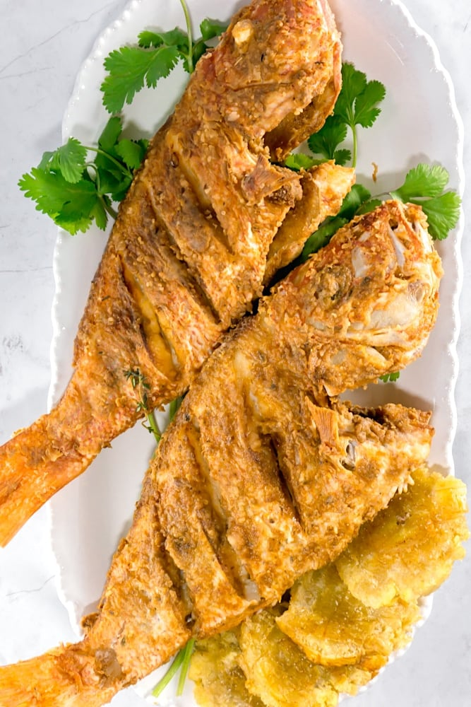 crispy fried red snapper