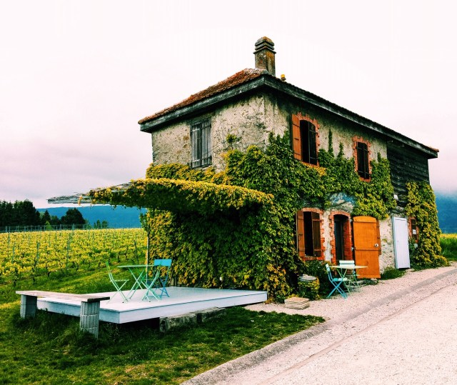 La Cabuche in the vineyards in Dardagny