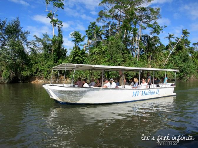 Daintree River - Bateau