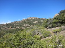 Tasmanie - Wineglass Bay Circuit 6