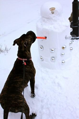 Duke defends the house against Dalek