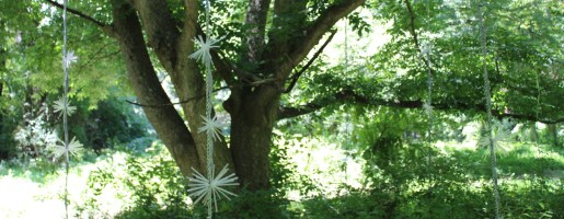 plastic straw stars attached to rope hang from tree branches