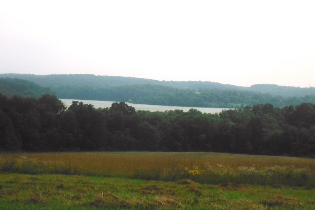 a landscape view of a lake from a distance. A field with wildflowers is in the foreground