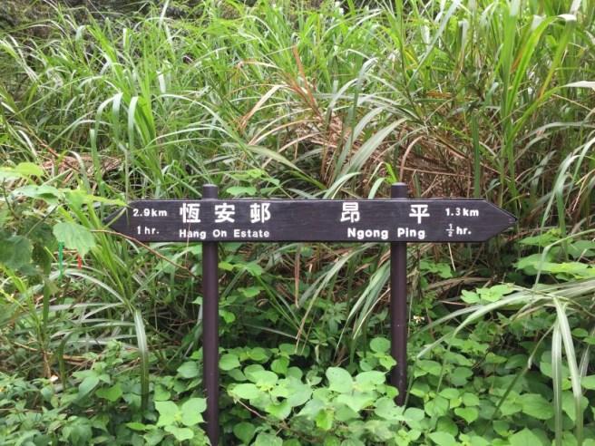 馬鞍山郊野公園>昂平高原>大水井
