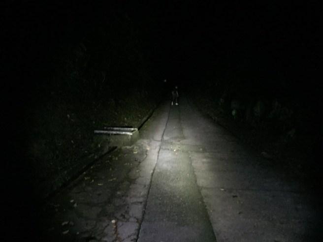 夜探大埔滘螢火蟲