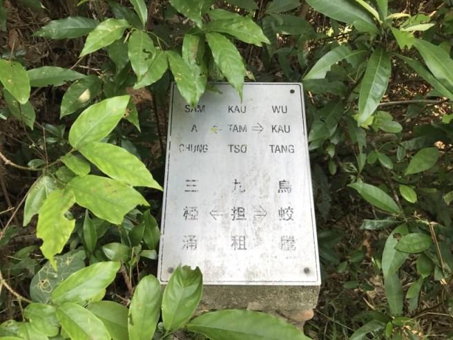 烏蛟騰>九担租>犂頭石>三椏村>三椏涌>下苗田>上苗田>九担租>烏蛟騰