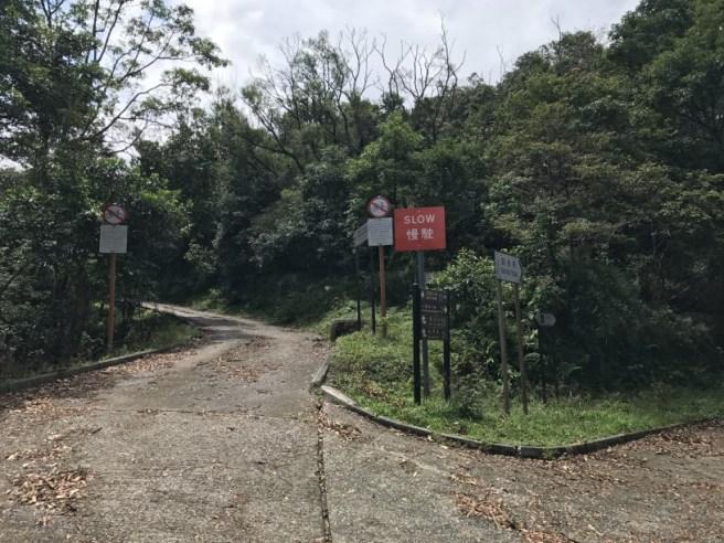 川龍>八鄉山火瞭望台(鱷魚朝天)>甲龍>荃錦公路