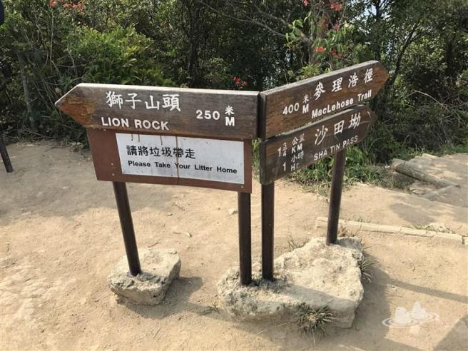 鷹巢山自然教育徑>麥理浩徑第5段>筆架山>獅子山>沙田坳道>沙田坳邨