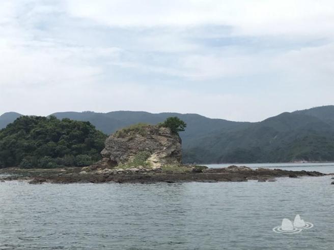 新界東北群島考察